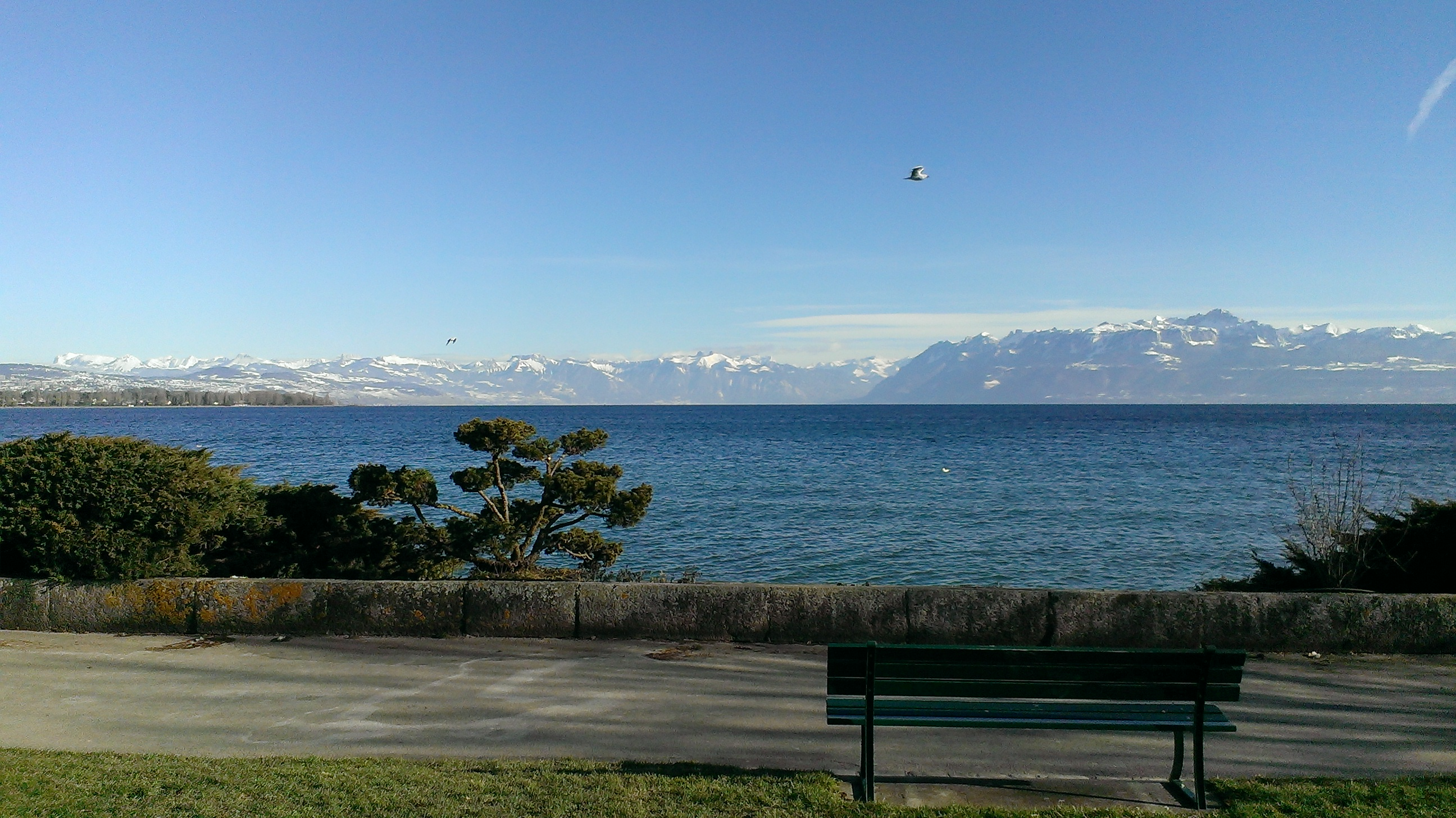 Lac Léman – Photo : © Jean-François Richer 2015
